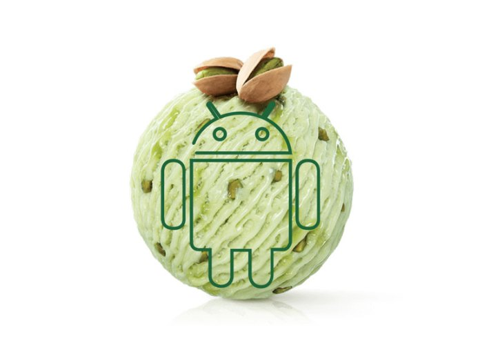 Huawei      Android P – Pistachio