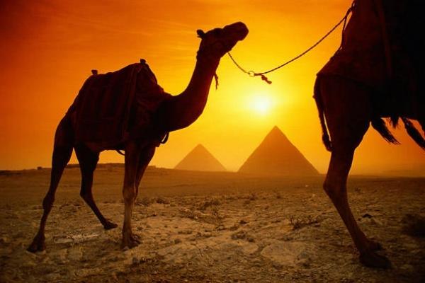 Президентът на Египет Абдел Фатах Саид Хусайн Халил Сиси подписа