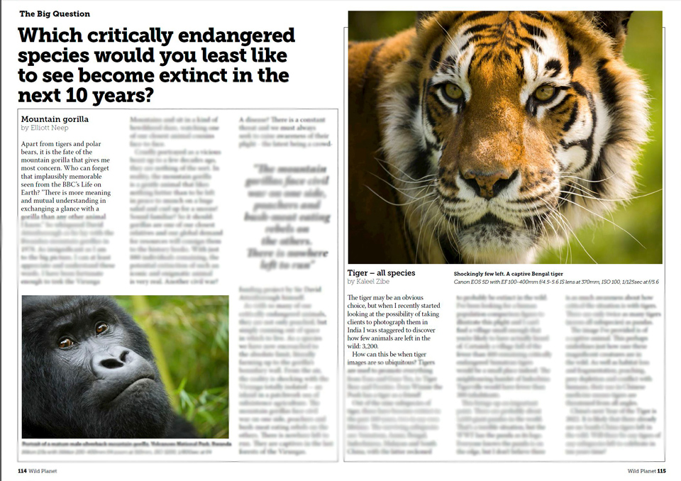 """I was asked """"Which critically endangered species would you least like to see become extinct in the next 10 years?"""""""