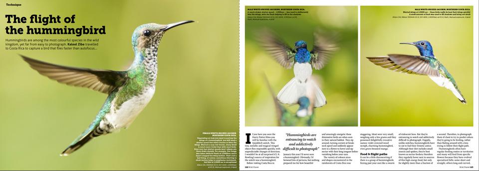 pages-1-4medium