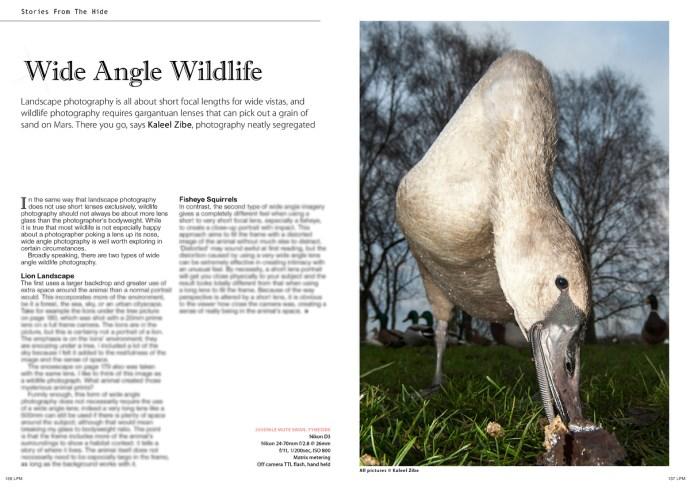 LWPM-SFTH-Wide Angle Wildlife-Kaleel Zibe