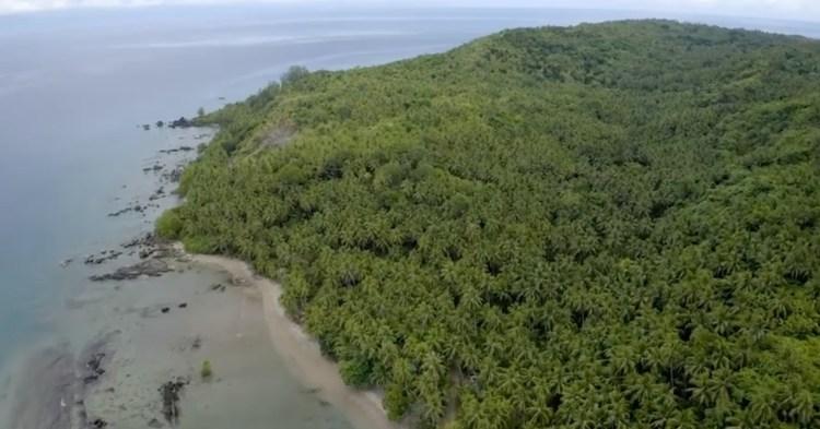 卡里派椰子農場 — 菲律賓波利略島