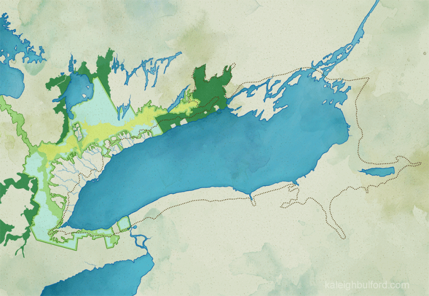 Illustrated map of the shoreline of the ancient Lake Iroquois without text, by Kaleigh Bulford.