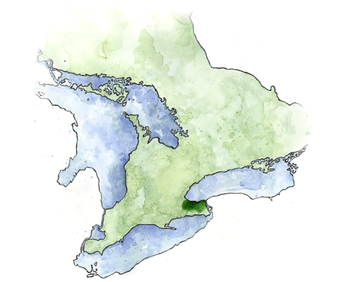 Wine Regions of Canada