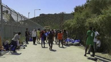 Photo of آمار درخواست پناهندگی در سطح اروپا سیر نزولی دارد