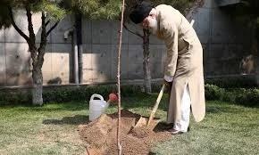 Photo of خامنهای: کرونا بلای آنچنان بزرگی نیست، صحیفه سجادیه بخوانید