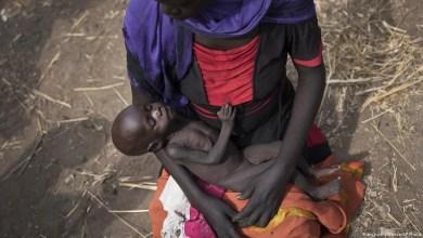 تصویر سازمان ملل : ۱۰ سال دیگر نیمی از اهالی قاره آفریقا دچار گرسنگی میشوند