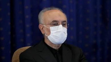 تصویر پس از نوبخت، علی اکبر صالحی نیز به کرونا مبتلا شد