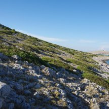 Une des iles du parc de Kornati