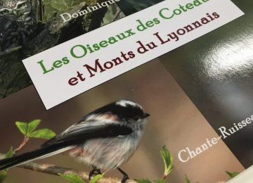 Impression du livre de Dominique Tissier
