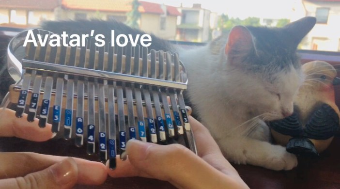 Avatar's love- the last airbender