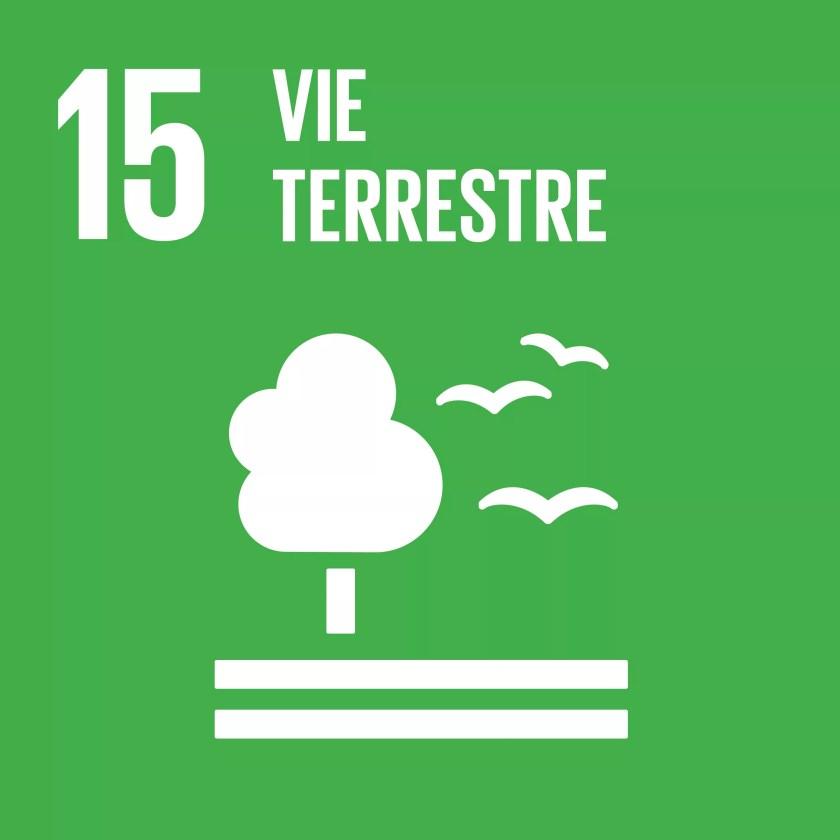 FR_SDG goals_icons-individual-cmyk