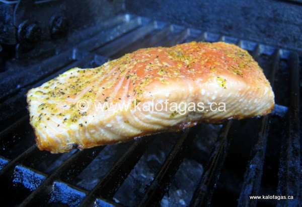 Mission Possible Grilling Salmon Fillets Kalofagas