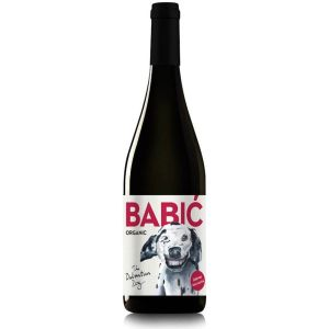 Dalmatian dog Babić - vino s pedigreom