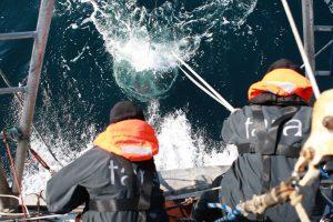 Los oceános contienen cerca de 200.000 especies de virus marinos que no conocíamos