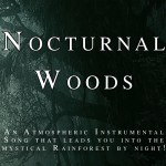 Nocturnal Woods