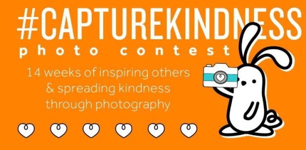 #capturkindness blog header image