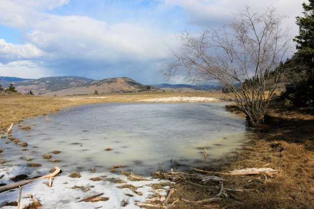 Dry Hills Loop 028r