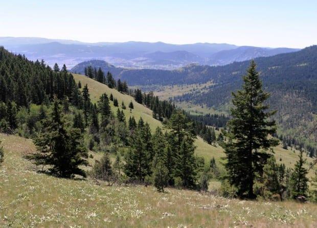 Harper Mountain 007r