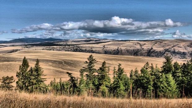 mountain hamilton hdr view