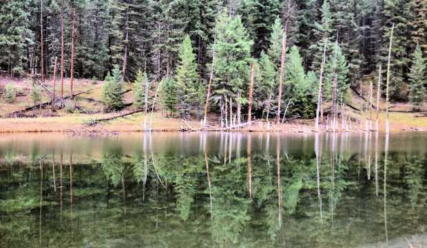 Lyons Lake 028r