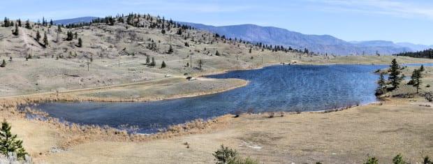 Six Mile Lake panor