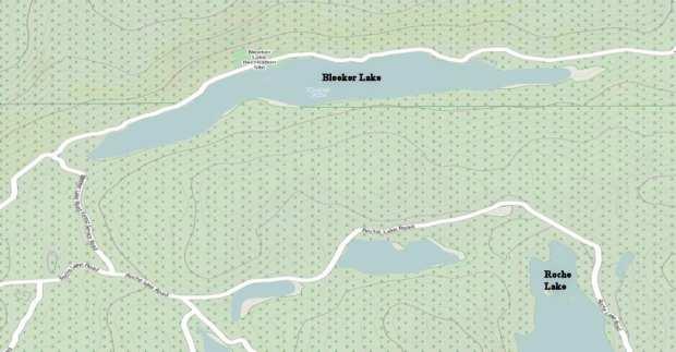 bleeker lake