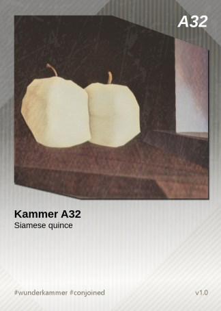 KammerCardA32 (preview)