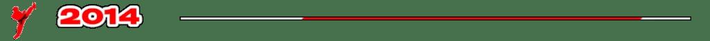 Trenner Grafik - Kampfsportschule Story Jahr 2014