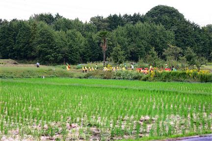 2af66b31d During the Tokugawa Era (1603 – 1868), large landholdings of rice-fields in  the Kanto region helped Ieyasu Tokugawa consolidate political power as the  chief ...