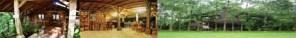 kampung 99 pepohonan, rumah kayu, restoran