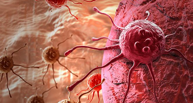Türkiye'de yılda 185 bin kişi kanser oluyor