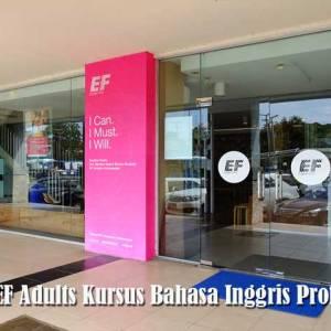 Belajar Bahasa Inggris Profesional di EF Adults