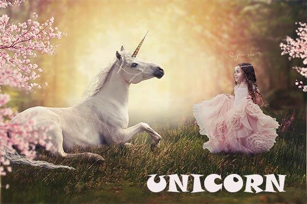 Pengertian Unicorn Dalam Bisnis Startup