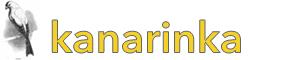 kanarinka is a female canary