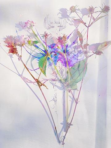 絵を描いて花を添えて夕方になるまでだれかを待っていた