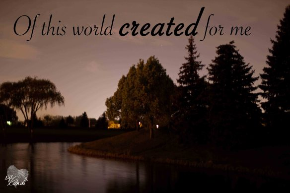 a pond surrounded by trees at night with the caption of this world created for me