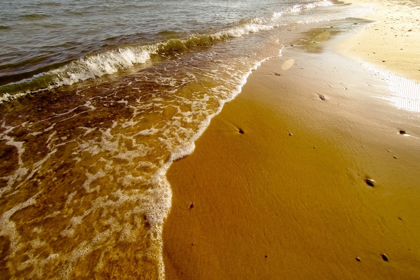summer-2018-scenes-kandise-brown-photographer-51