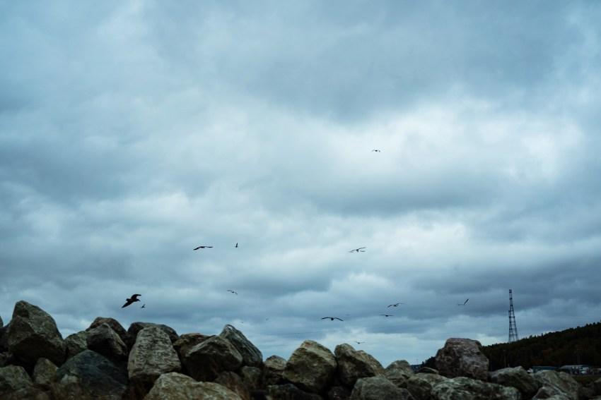 43-cape-breton-landscape-photography-kandise-brown