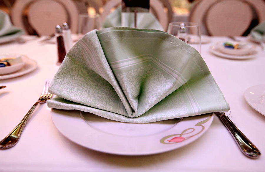 Enchanted-Garden-Dinner-Plate-Napkin