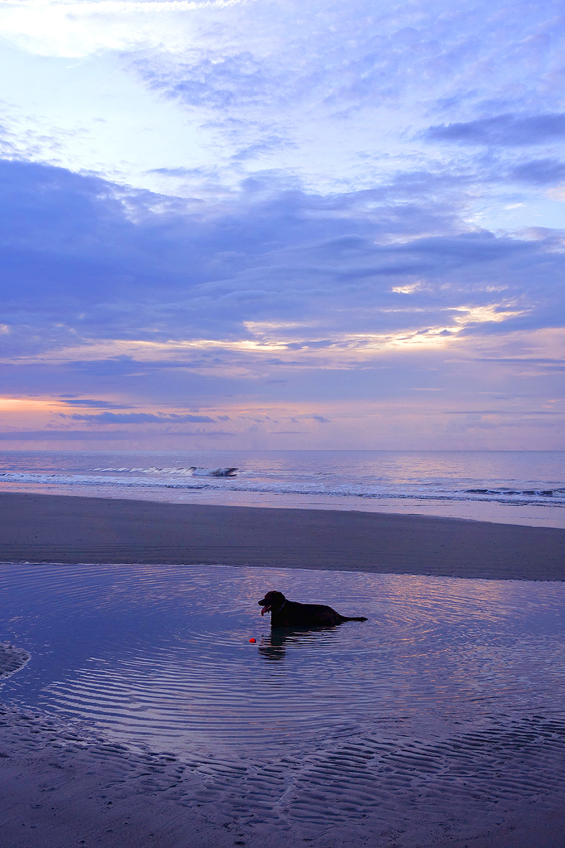 Hilton-Head-Island-Sunrise-03