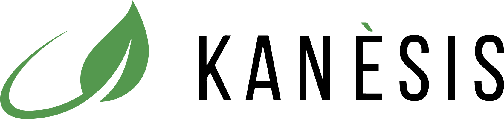 Kanèsis