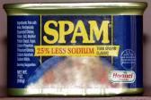 spam asli