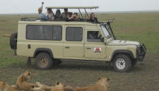 Tanzanian safari packages