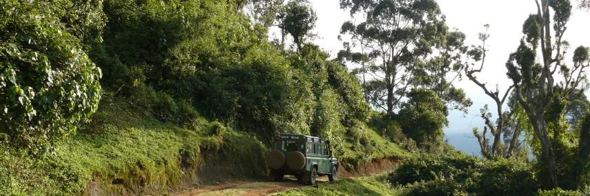 a Tanzania Trekking Safari near Kilimanjaro