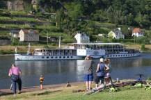 KVL Drachenboot Pirna 06-2018 Bild 24
