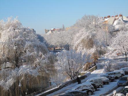 schneewetter-443