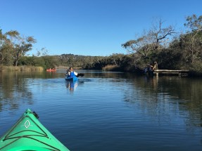 Kayaking on the river in Anglesea Great Ocean Road