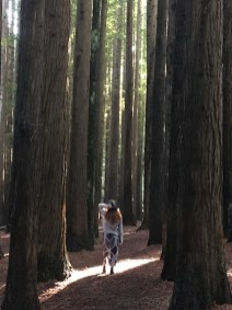Girl in the sunshine in the Redwood Forest, The Otways, Great Ocean Road