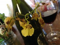 Flowers, The Agrestic Grocer, Orange Wine Tours